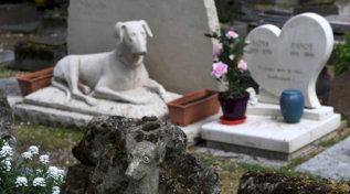 In Francia il più antico cimitero del mondo per gli animali domestici