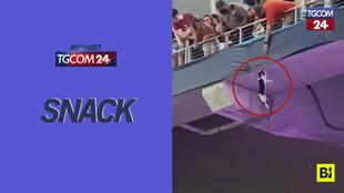 Miami, gatto precipita dalla tribuna dello stadio