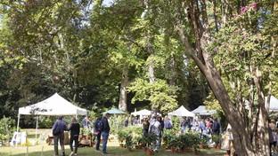 Emilia Romagna: giardinaggio di qualità a Verde Grazzano