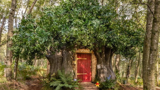 Arriva su Airbnb lacasa ispirata a Winnie The Pooh