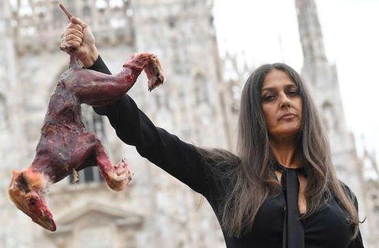 """Rosita Celentano con una """"volpe scuoiata"""" in mano protesta contro le pellicce"""