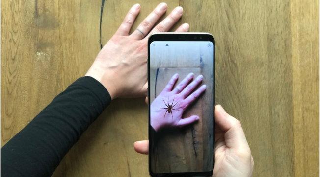 Ecco Phobys, l'app che aiuta a superare la paura dei ragni