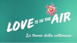 """""""Love is in the Air"""", le trame della settimana"""