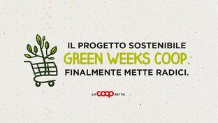 Con il progetto 'Oasi urbane' piantumeremo alberi in 10 città italiane