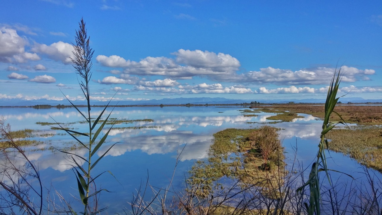Lagune di Grado e Marano: fascino senza tempo