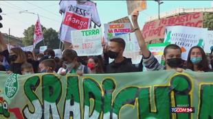 Fridays for Future, i ragazzi tornano in piazza per il clima