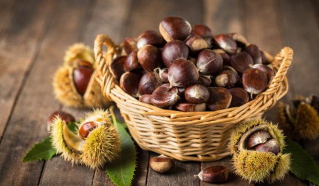 Castagne: scopri le tante virtù benefiche di questo frutto squisito