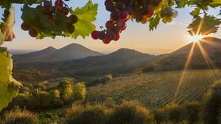 Veneto: benessere e relax nell'autunnodei Colli Euganei
