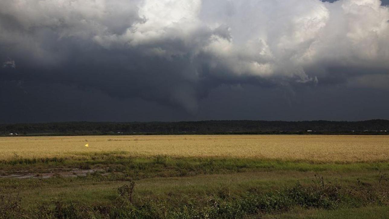 Meteo: peggioramento in arrivo, ma al Sud si registrano temperature eccezionalmente miti